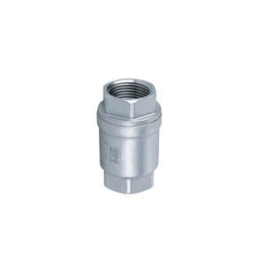 Low Pressure Air Check Valve Type Spring 1-1/2 Inch Stainlee Steel 304 For Air Compressor