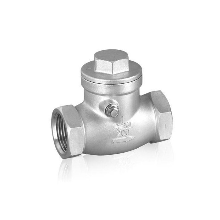 Female Thread Swing Check Valve 1 Inch One Way SS 201