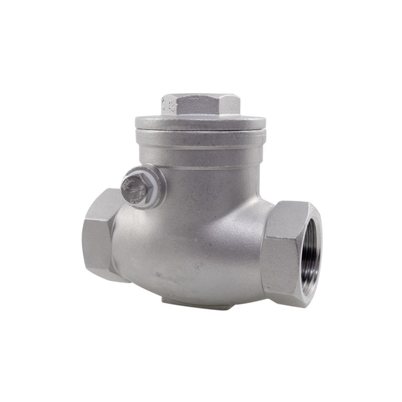 1000 WOG Stainless Steel 316 Mini Check Valve Swing Type 3/4 Inch 6000 PSI