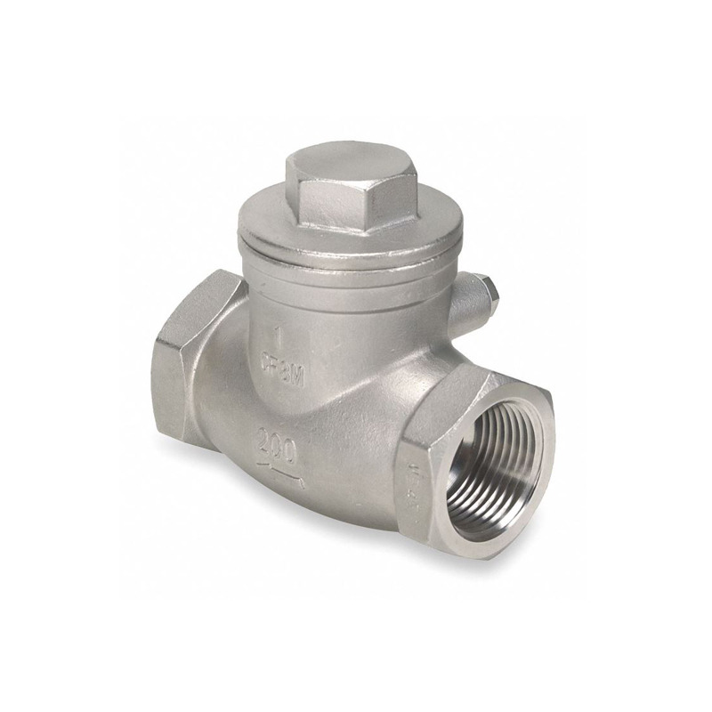 Stainless Steel 316 Swing Check Valve 2-1/2 Inch Female Thread For Fuel Safety