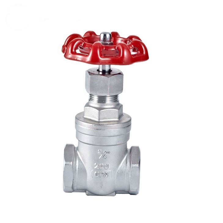 Chemical Resistance Red Handwheel Gate Valve DN25 1 Inch Class 400 PN 64